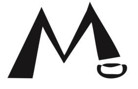 ART_2014_02 Typographies (mediums mixtes) (5)